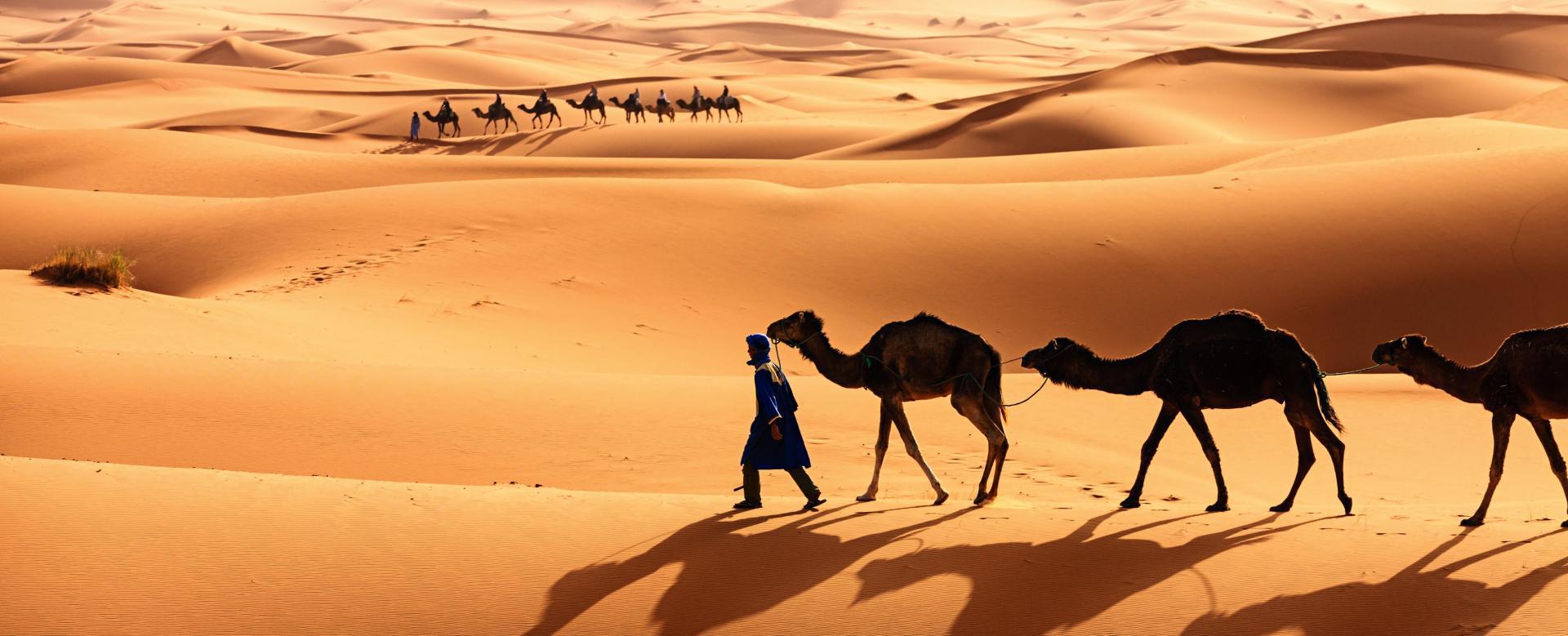Voyage à pied Mauritanie : L'odyssée des sables : de ouadane à chinguetti