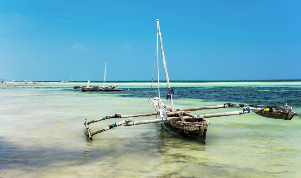 Image Big five et plages de l'océan indien