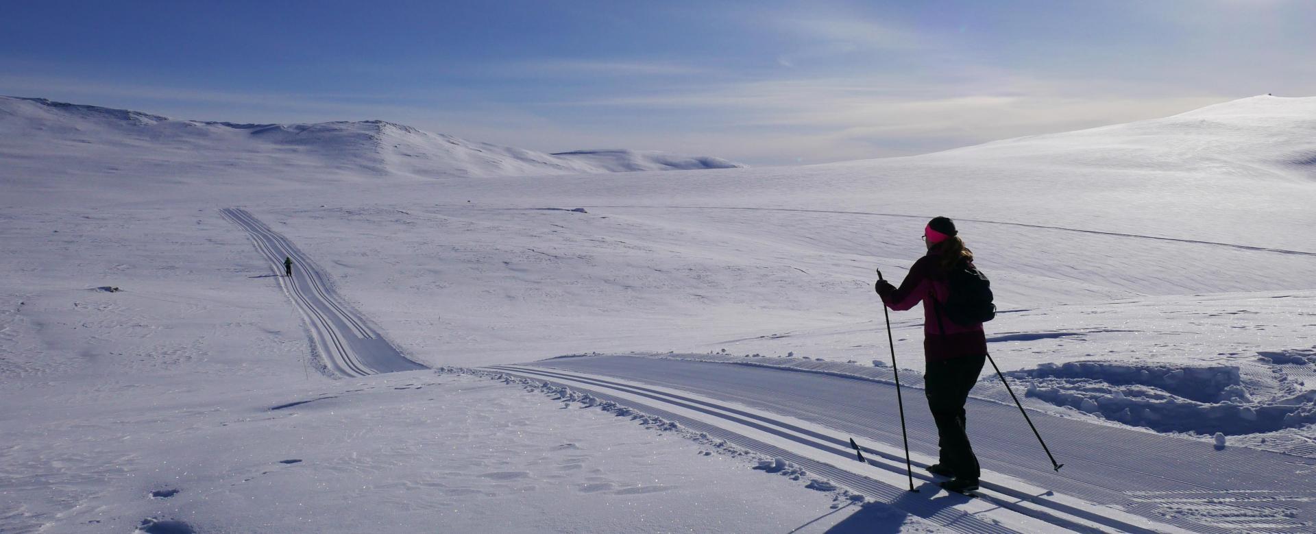 Voyage à pied : Norvège : Ski nordique jotunheimen et rondane