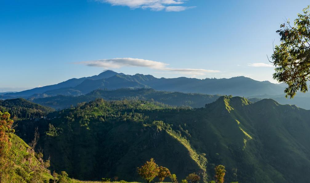 Image Balade estivale en pays cinghalais