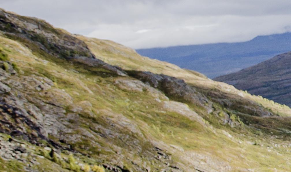 Image Alpes suédoises, archipel de luleå et taïga