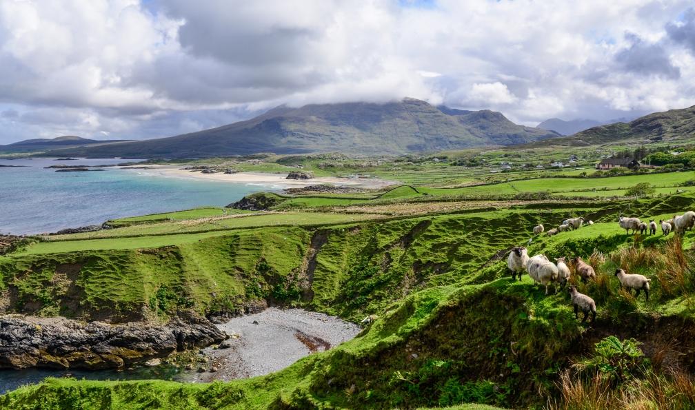 Image îles et montagnes d'irlande