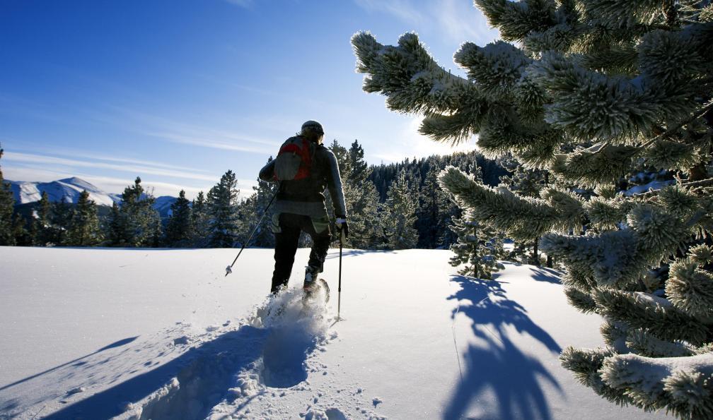 Image Roumanie : les carpates en raquettes à neige