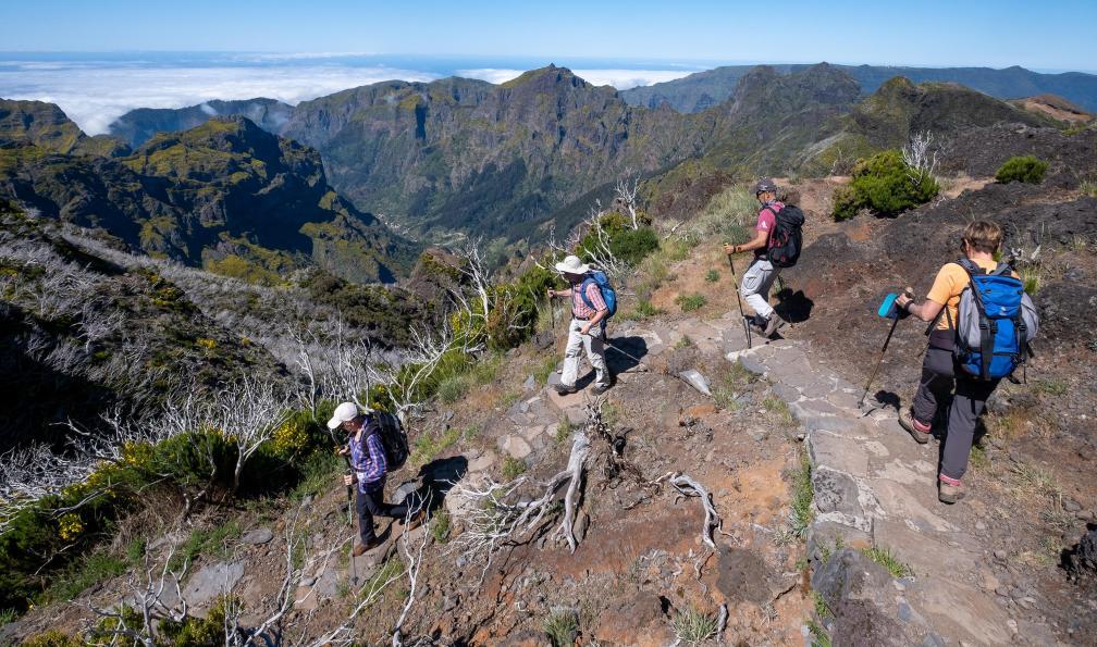 Image Randonnées de picos en levadas