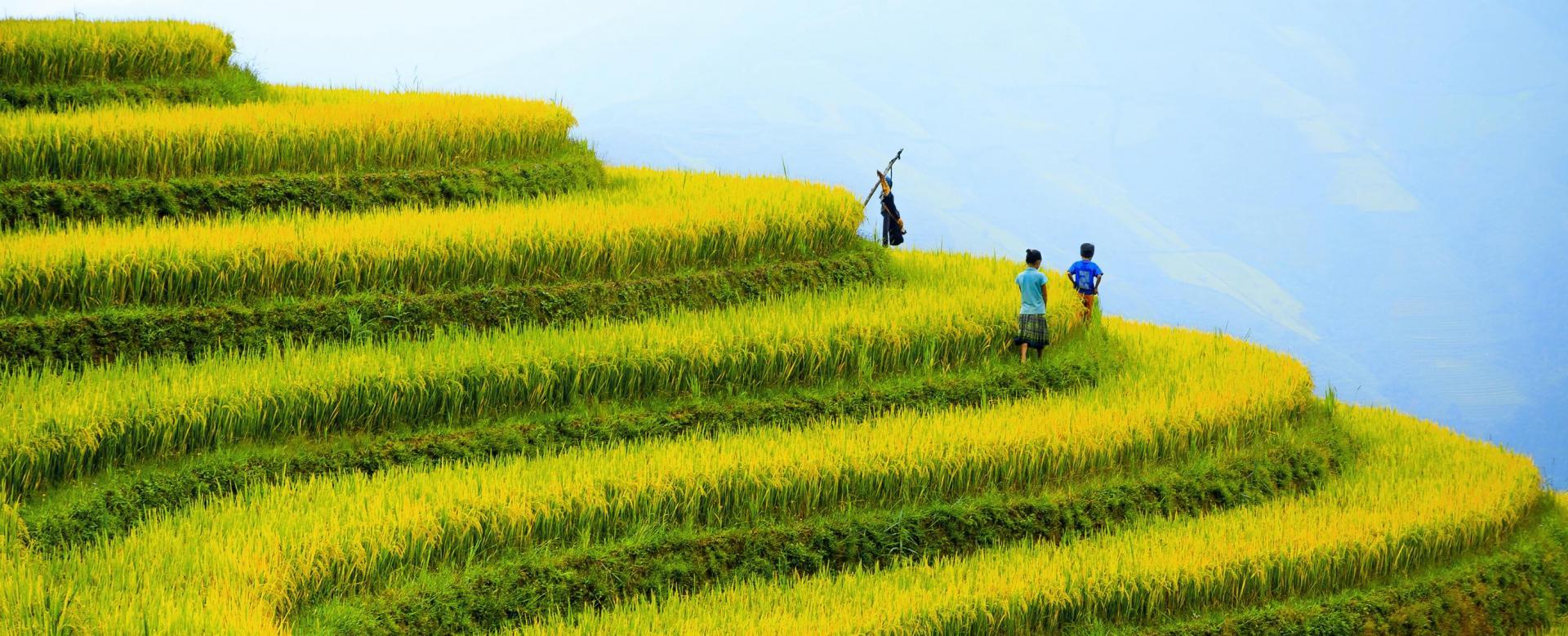 Voyage à pied : Vietnam : Mosaïque ethnique du tonkin