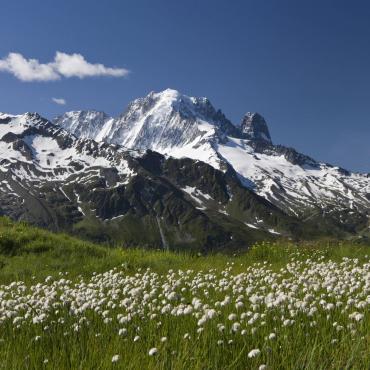 Le tour du Mont-Blanc confort