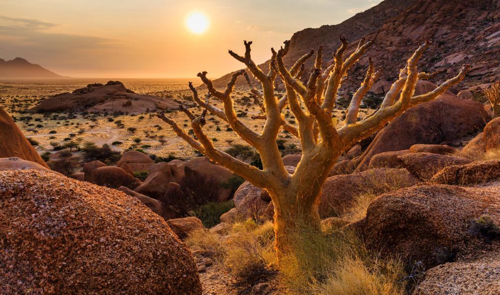 Image Grande randonnée en namibie