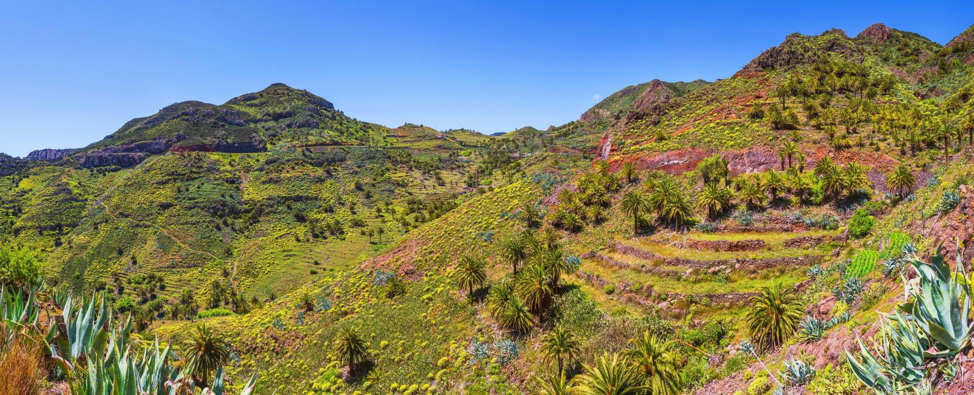 Voyage à pied Espagne : Tenerife, la palma et la gomera
