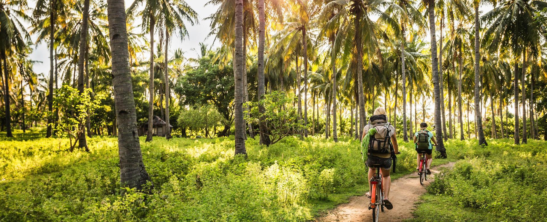 Voyage en véhicule : Vélo et rando à bali