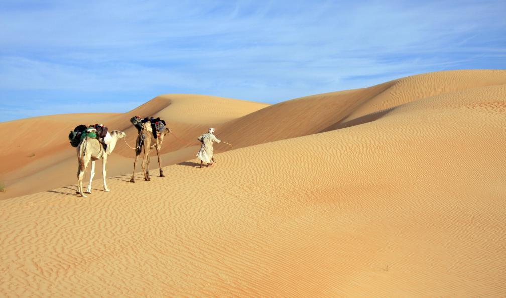 Image Du sarhro au sahara