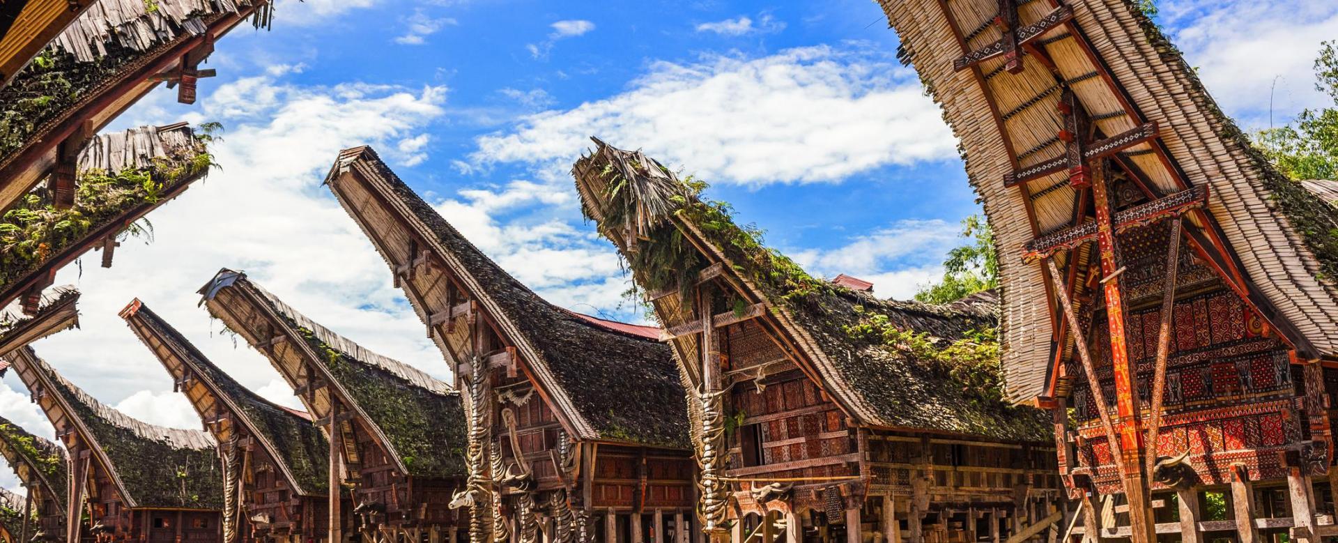Voyage à pied : Sulawesi : pays toraja et goélettes bugis