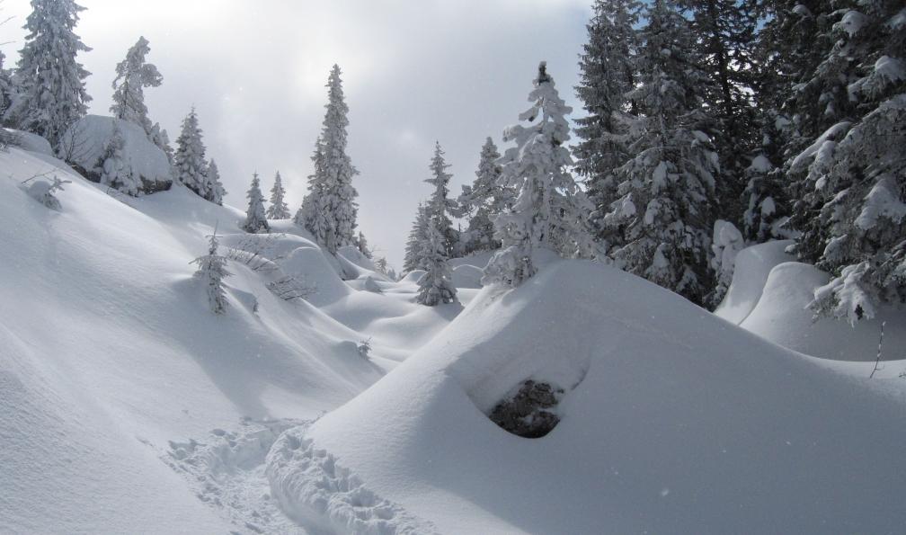 Image Réveillon montagnard en chartreuse