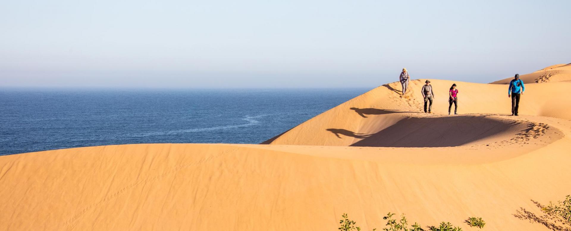 Voyage avec des animaux Maroc : La caravane océane