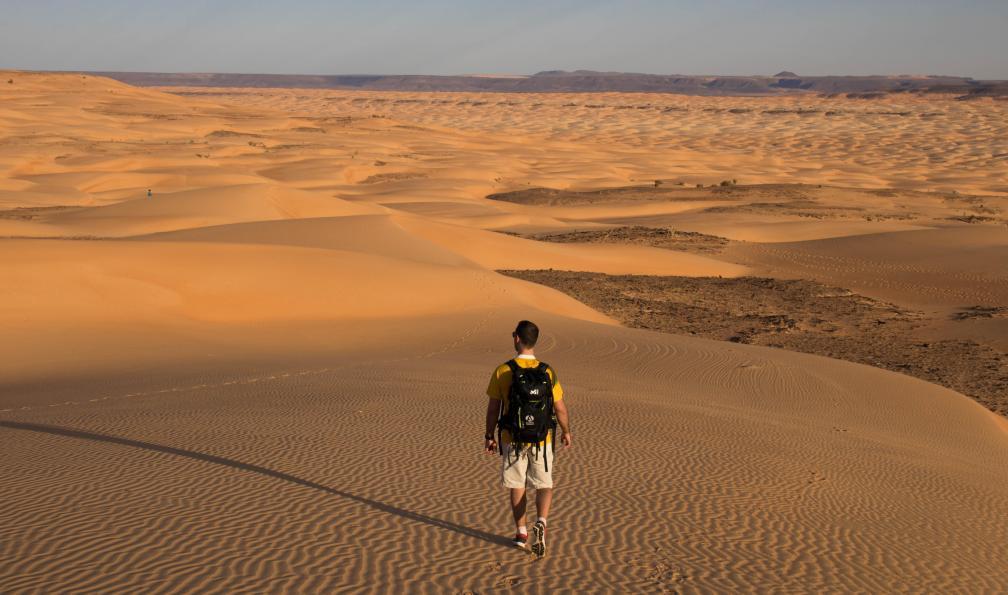 Image Train du désert, banc d'arguin et dunes de l'adrar