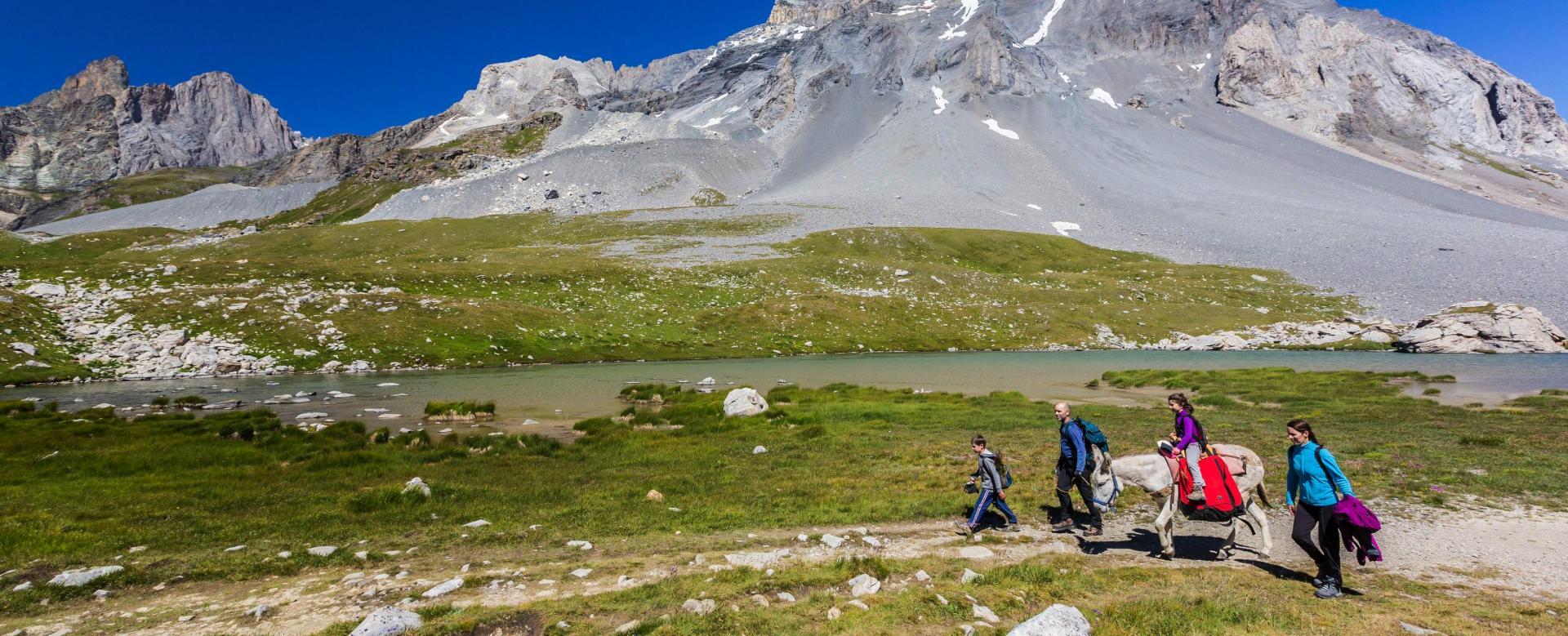 Voyage avec des animaux Italie : Hi-han au mont-blanc : deuxième étape
