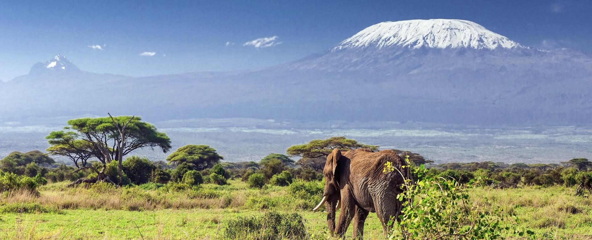 Trekking kilimandjaro - Traversée et ascension du Kilimandjaro - Trekking -  Tanzanie - Allibert Trekking