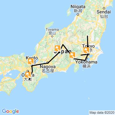 Itinéraire Japon, chrysanthème du pacifique