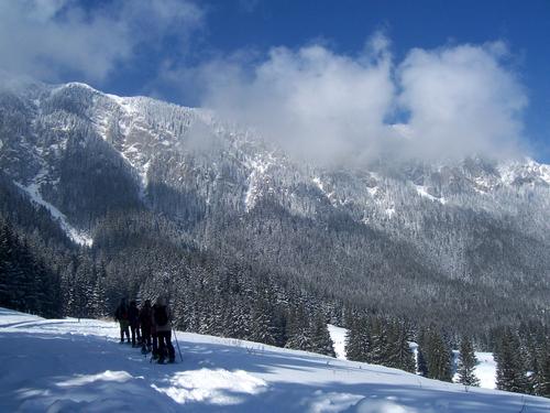 Image Bucarest, carpates et transylvanie en hiver