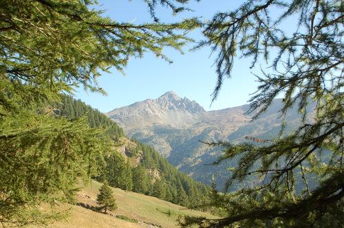 Image Le trail du queyras