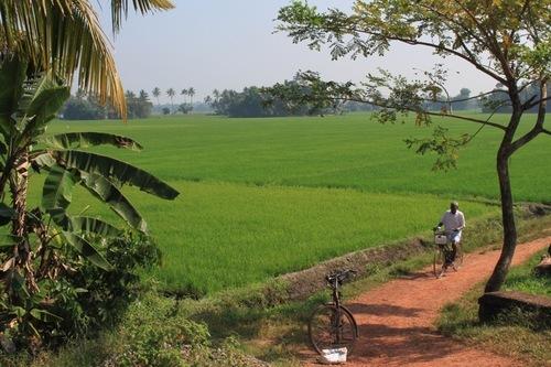 Image Les couleurs du kerala à vélo