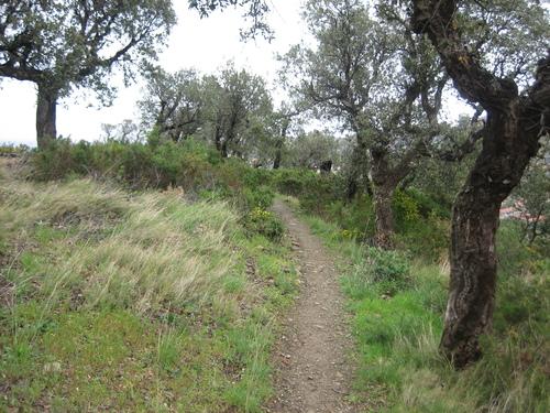 Image Trail collioure-cadaqués en liberté