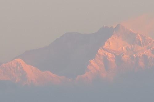 Image Du bengale au sikkim