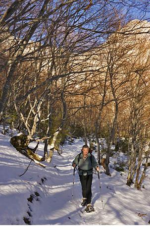 Image Détente hivernale en vercors