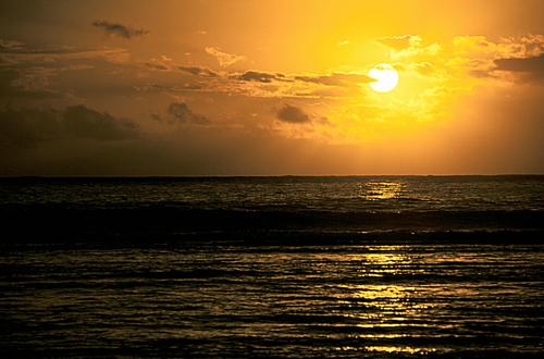 Image L'île aux trésors