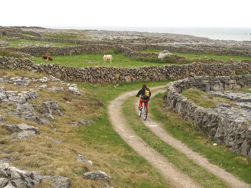 Image Iles d'aran et connemara à vélo en famille