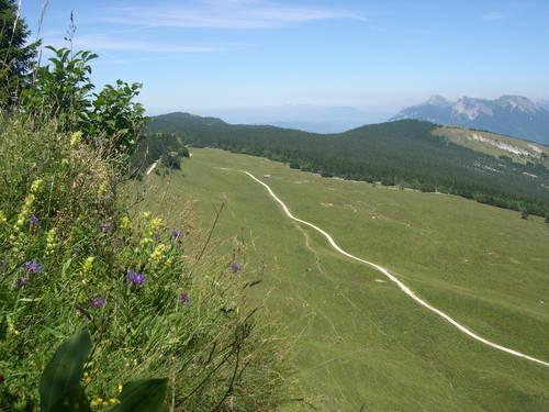 Image Le tour des quatre-montagnes avec mon âne