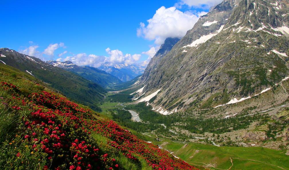Image Le grand tour du mont-blanc