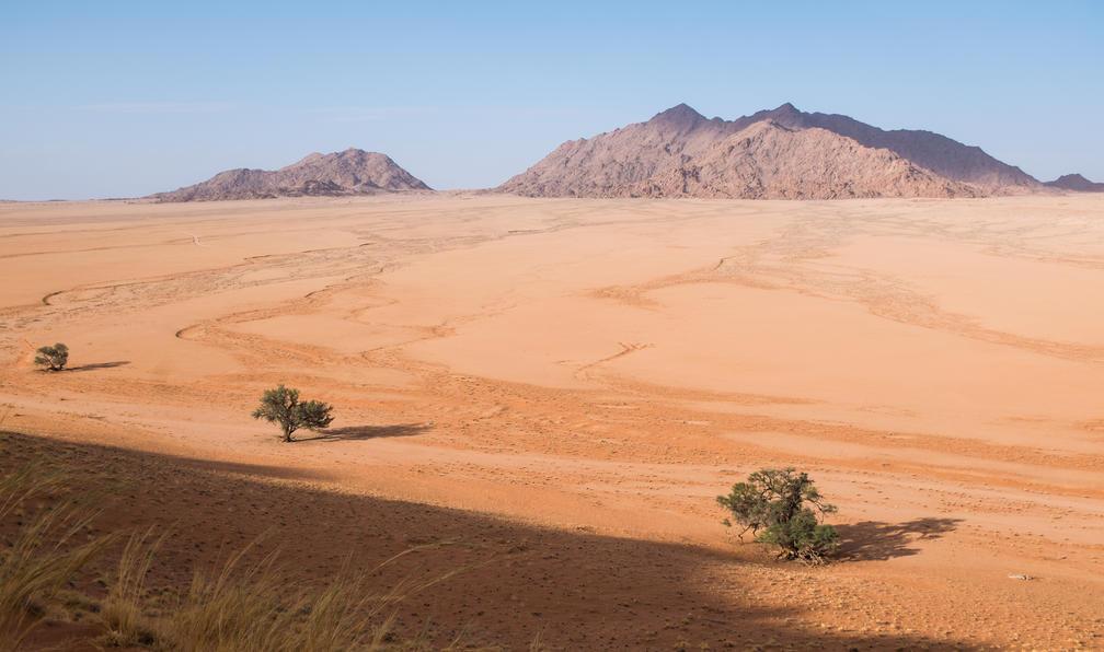 Image Balades et safaris en namibie