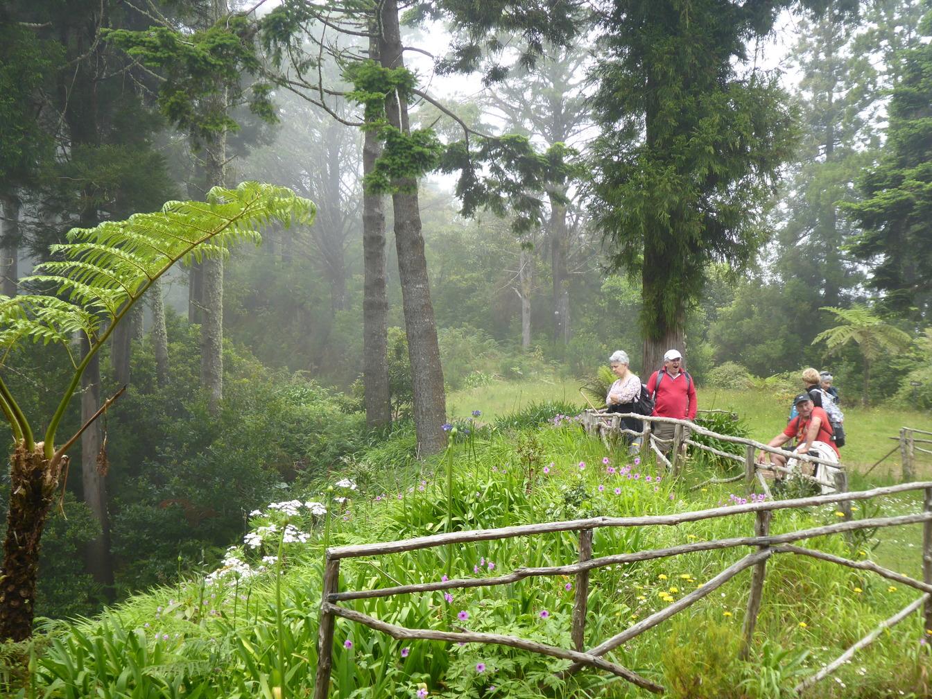 Sur Escapade Madère Circuit Pas Cher Randonnée L'île Aux Fleurs IqvqxwCdt